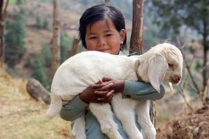 Visado a India desde Nepal