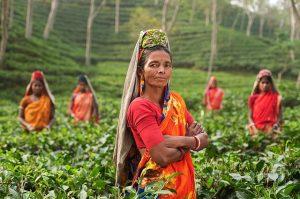 Visado a India 2018 – La guía completa